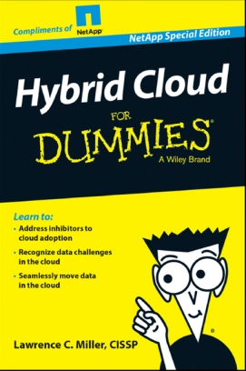 netapp_hybrid_cloud_dummies